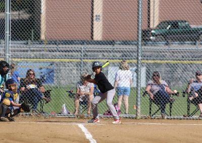 Baseball Photographer (19)